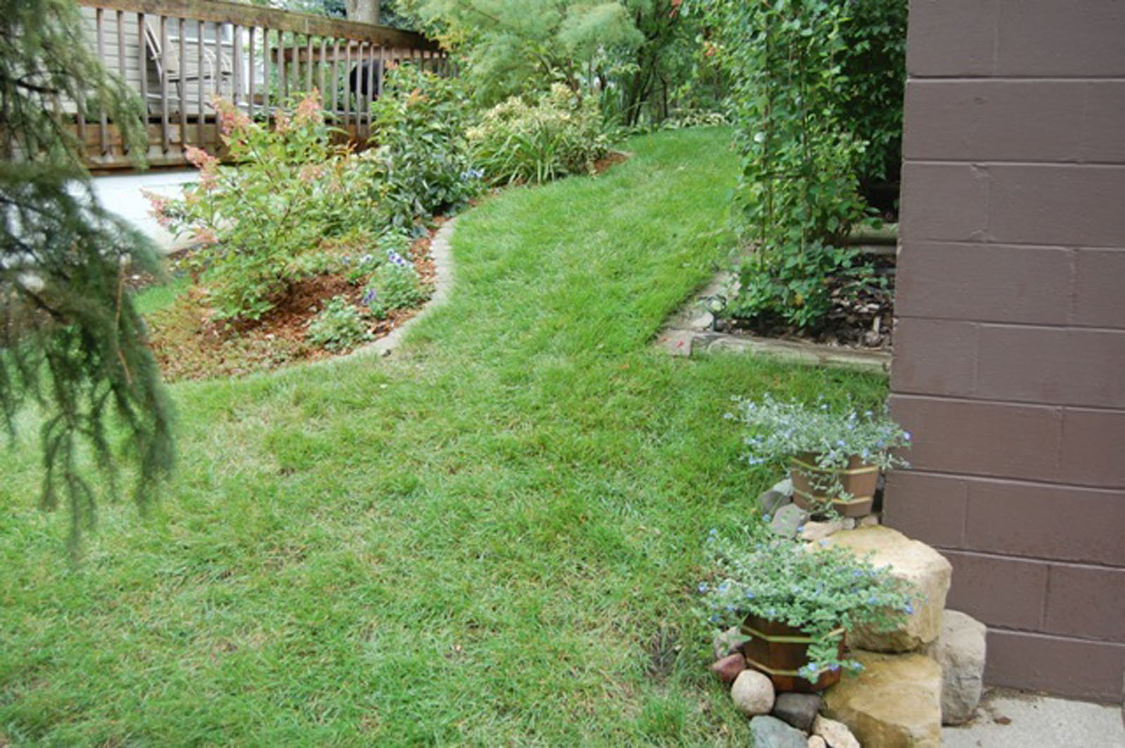 St. Louis Park Side Yard Before